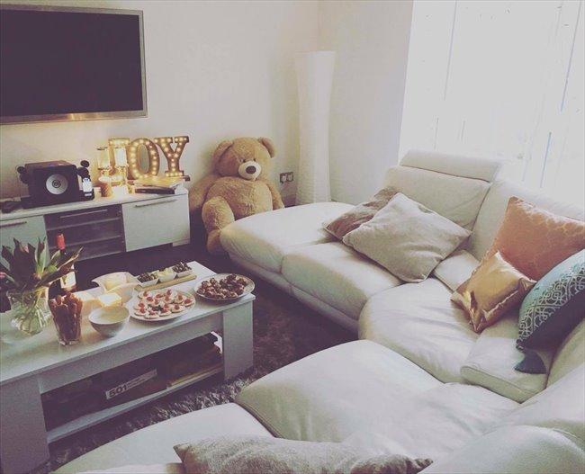 1 Bedroom Flat Share Dee Village Aberdeen Ab11 6sz