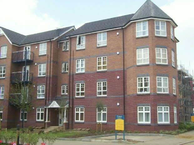 Double Room Flat Or House To Com Let Northampton