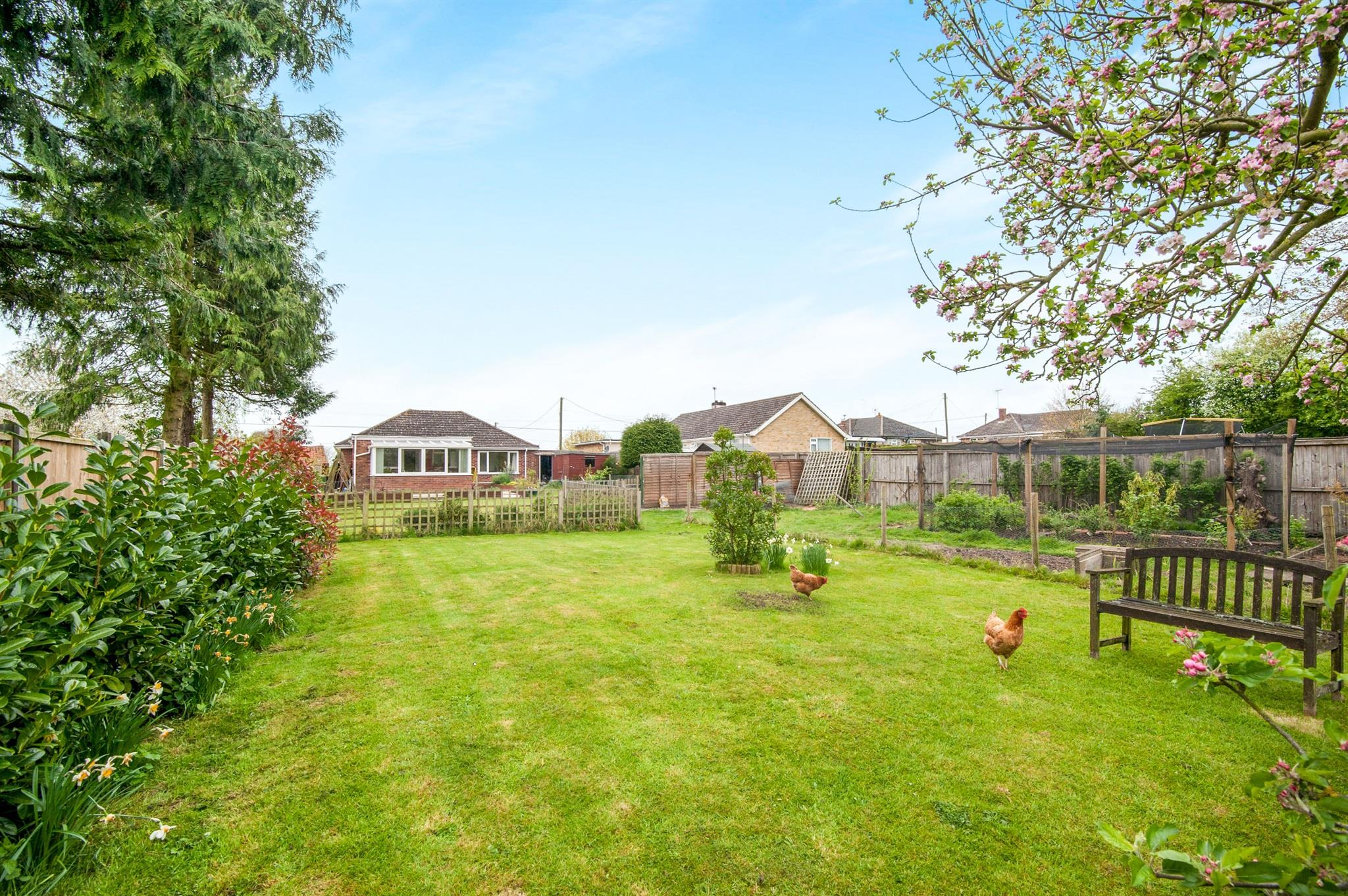 3 Bedroom Detached Bungalow For Sale Hills Road Thetford Ip25 7en
